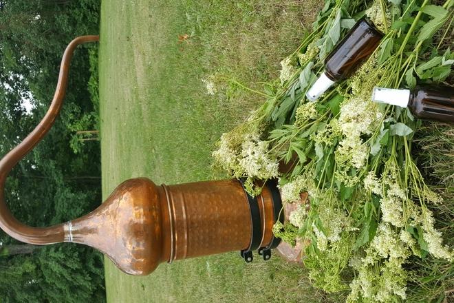 Produkcja hydrolatów z roślin